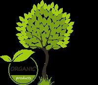 organic-vision.png